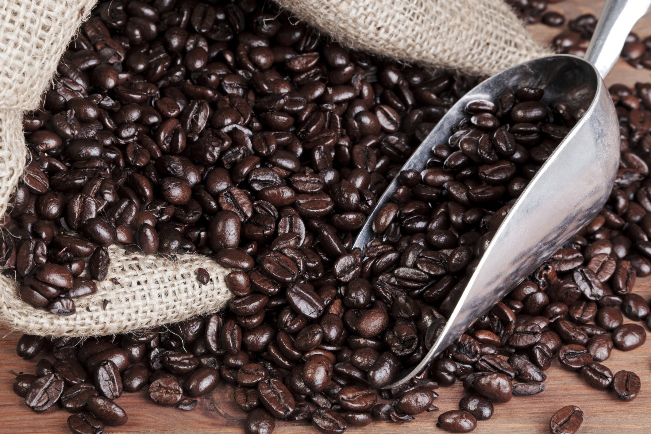 why are some coffee beans oily